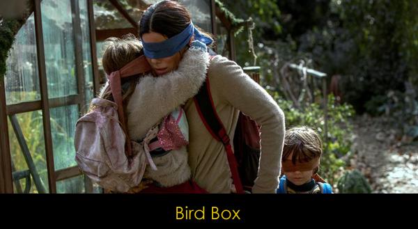 Netflix bird box filmi