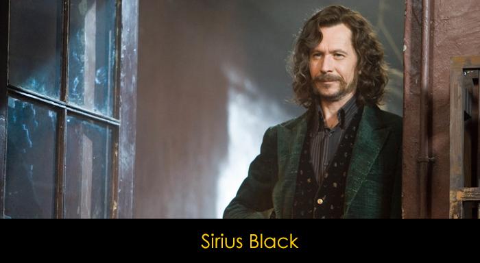 En İyi Harry Potter Karakterleri - Sirius Black