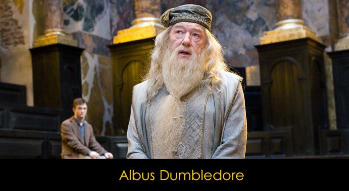 En İyi Harry Potter Karakterleri - Albus Dumbledore