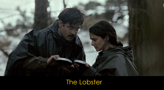 En iyi Colin Farrell filmleri - The Lobster
