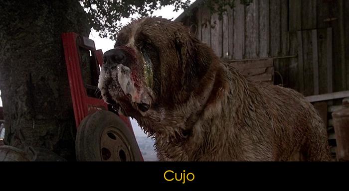 En İyi Köpek Filmleri - Cujo