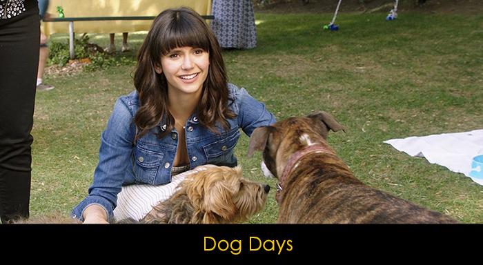 En İyi Köpek Filmleri - Dog Days