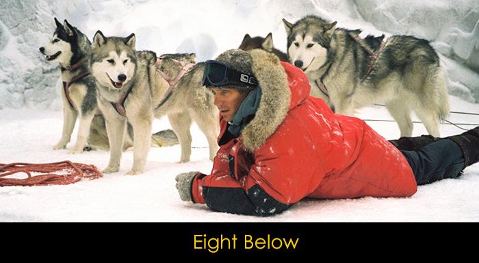 En İyi Köpek Filmleri - Eight Below
