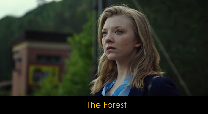 En İyi Netflix Mini Dizileri - The Forest